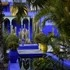 20/05 > 17/12/17 Expo | Le Jardin Majorelle, photographies